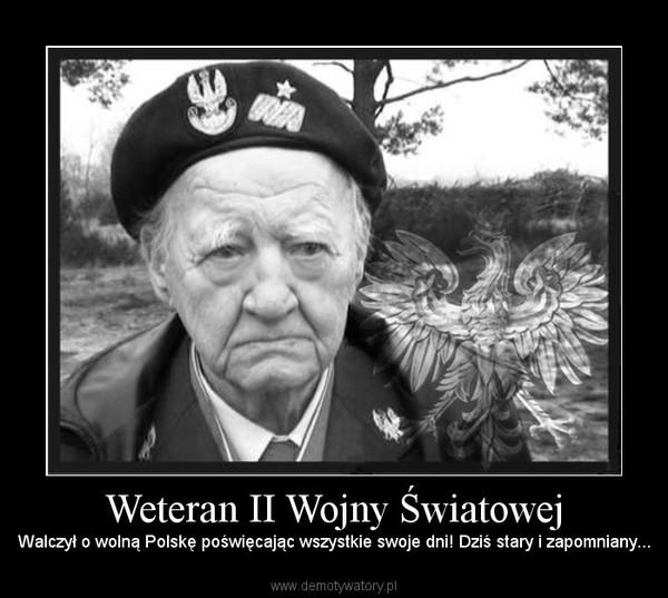 Weteran II Wojny Światowej – Walczył o wolną Polskę poświęcając wszystkie swoje dni! Dziś stary i zapomniany...