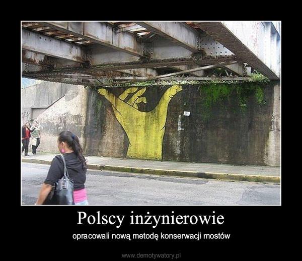 Polscy inżynierowie – opracowali nową metodę konserwacji mostów