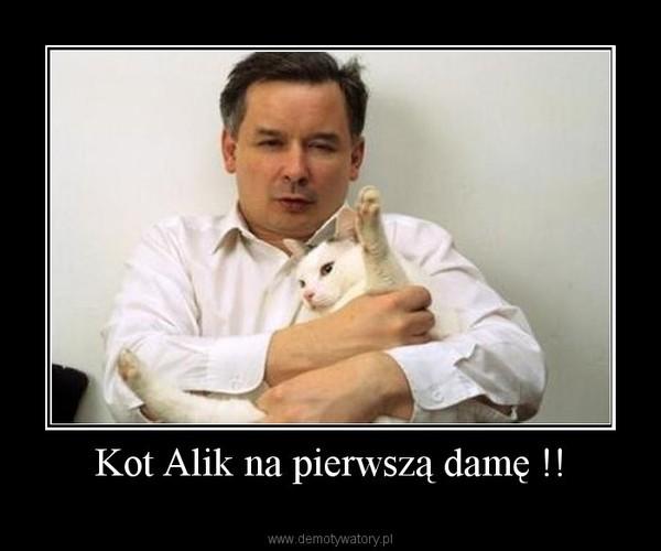 Kot Alik na pierwszą damę !! –