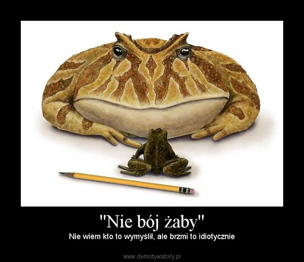 ''Nie bój żaby'' – Nie wiem kto to wymyślił, ale brzmi to idiotycznie