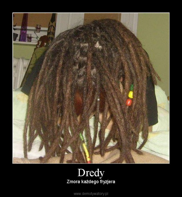 Dredy Demotywatorypl