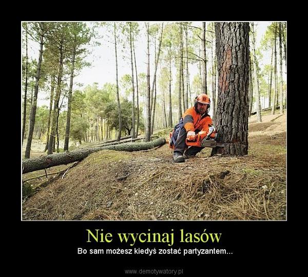 Nie wycinaj lasów –  Bo sam możesz kiedyś zostać partyzantem...