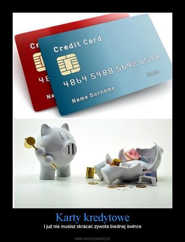 Karty kredytowe – I już nie musisz skracać zywota biednej śwince