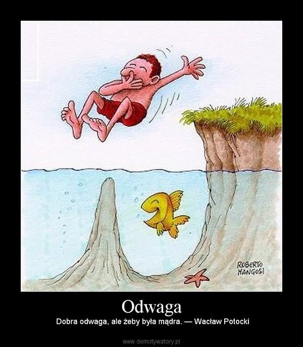Odwaga – Dobra odwaga, ale żeby była mądra. — Wacław Potocki