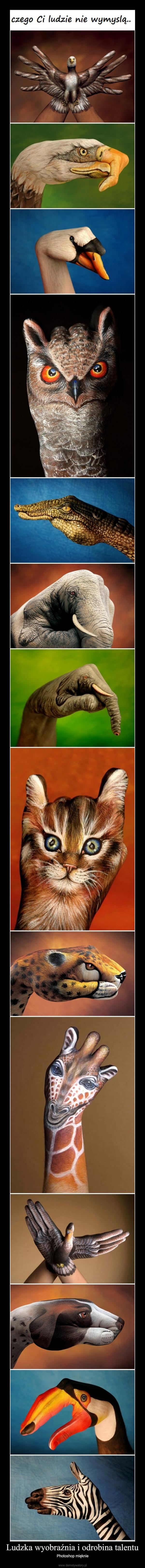 Ludzka wyobraźnia i odrobina talentu – Photoshop mięknie
