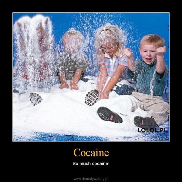 Cocaine – So much cocaine!