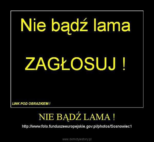 NIE BĄDŹ LAMA ! – http://www.foto.funduszeeuropejskie.gov.pl/photos/Sosnowiec1
