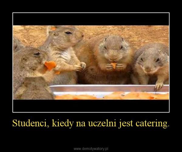 Studenci, kiedy na uczelni jest catering. –