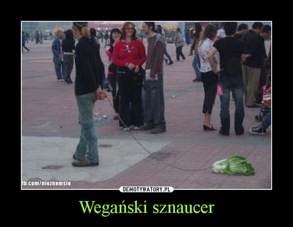 Wegański sznaucer –