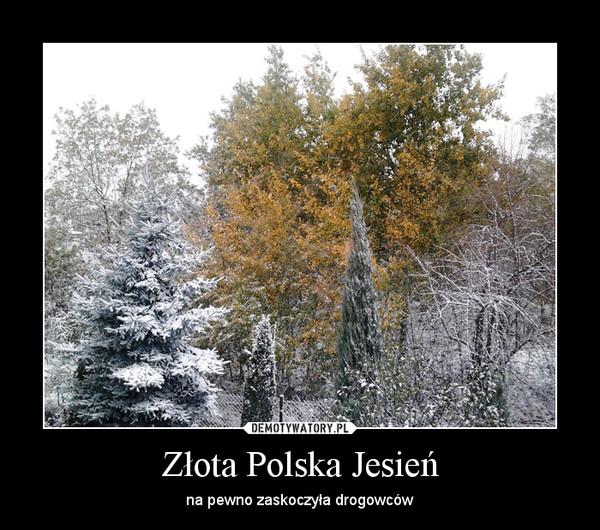Złota Polska Jesień – na pewno zaskoczyła drogowców