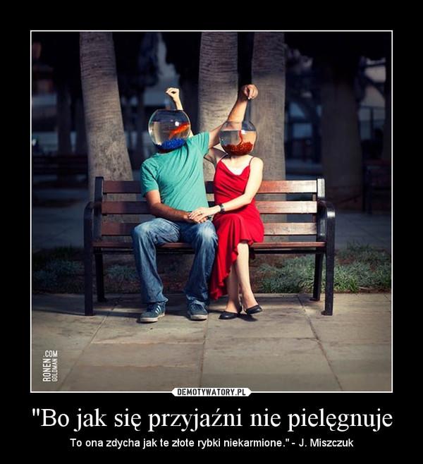 """""""Bo jak się przyjaźni nie pielęgnuje – To ona zdycha jak te złote rybki niekarmione."""" - J. Miszczuk"""