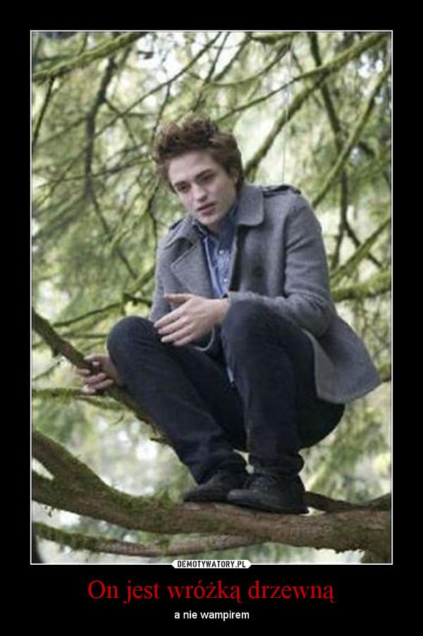On jest wróżką drzewną – a nie wampirem