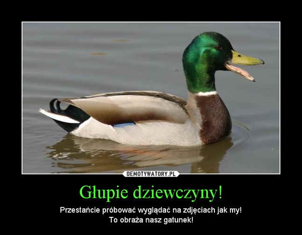 Głupie dziewczyny! – Przestańcie próbować wyglądać na zdjęciach jak my!To obraża nasz gatunek!