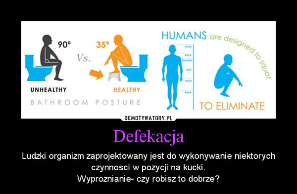 Defekacja – Ludzki organizm zaprojektowany jest do wykonywanie niektorych czynnosci w pozycji na kucki.\nWyproznianie- czy robisz to dobrze?