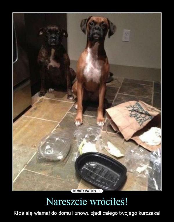 Nareszcie wróciłeś! – Ktoś się włamał do domu i znowu zjadł całego twojego kurczaka!