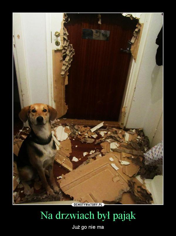 Na drzwiach był pająk – Już go nie ma