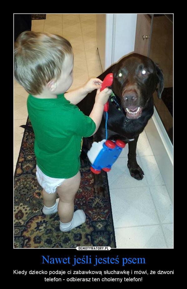 Nawet jeśli jesteś psem – Kiedy dziecko podaje ci zabawkową słuchawkę i mówi, że dzwoni telefon - odbierasz ten cholerny telefon!