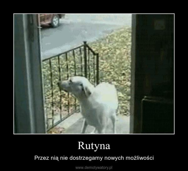 Rutyna – Przez nią nie dostrzegamy nowych możliwości