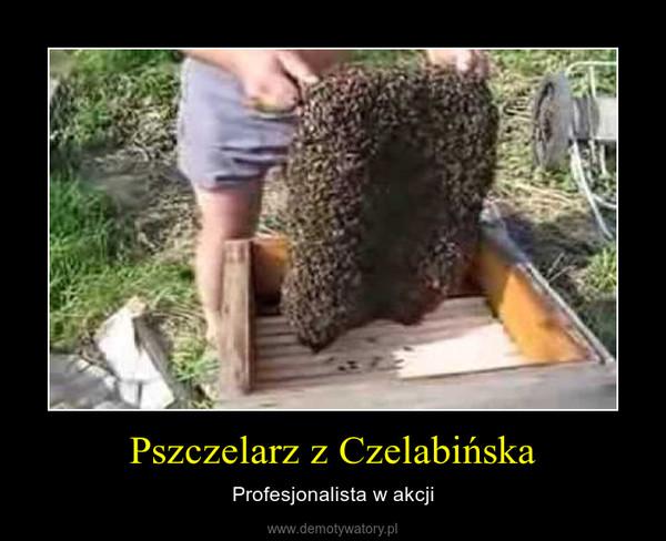 Pszczelarz z Czelabińska – Profesjonalista w akcji