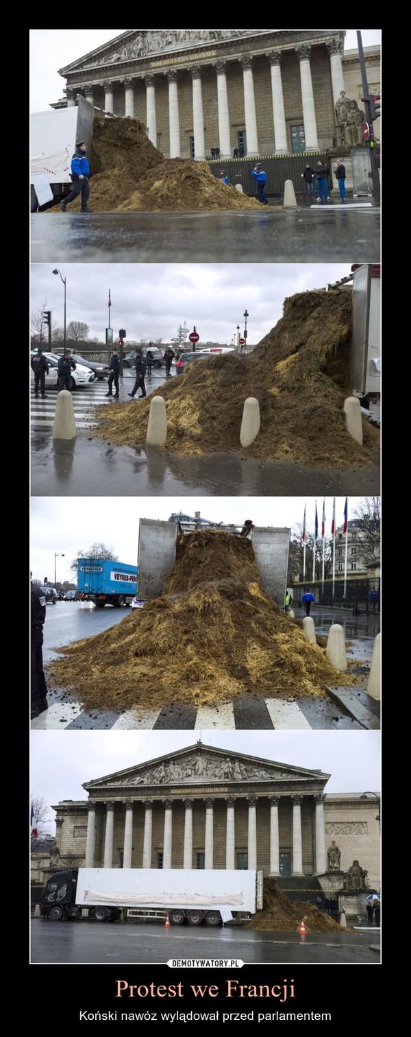 Protest we Francji – Koński nawóz wylądował przed parlamentem