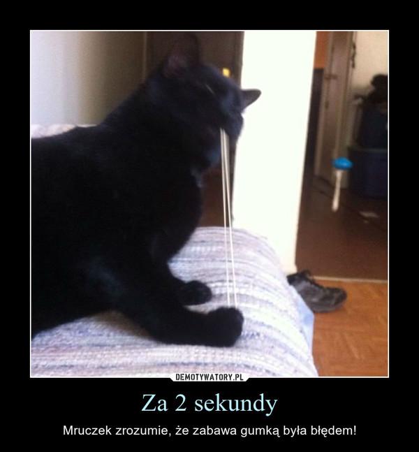 Za 2 sekundy – Mruczek zrozumie, że zabawa gumką była błędem!