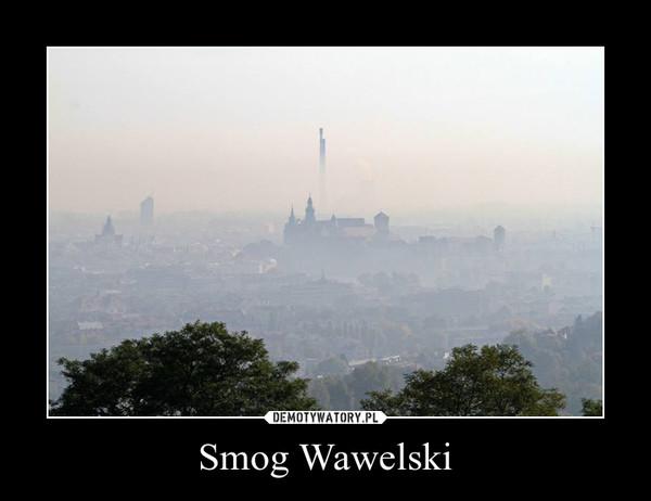 Smog Wawelski –
