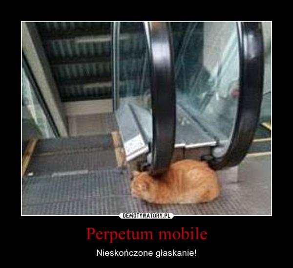 Perpetum mobile – Nieskończone głaskanie!