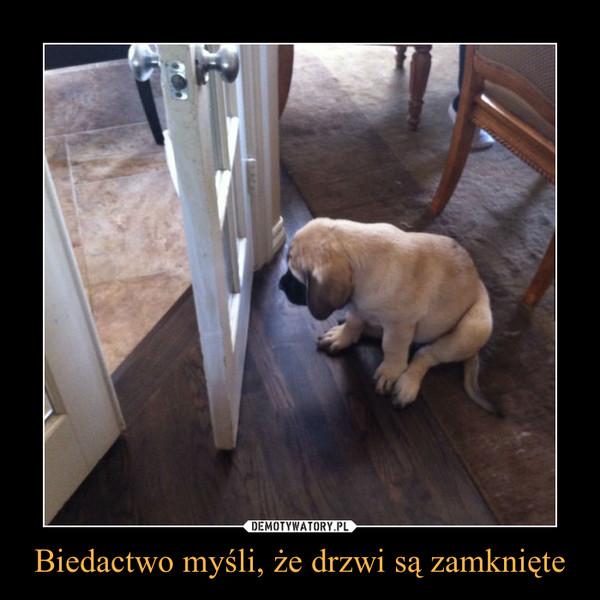 Biedactwo myśli, że drzwi są zamknięte –