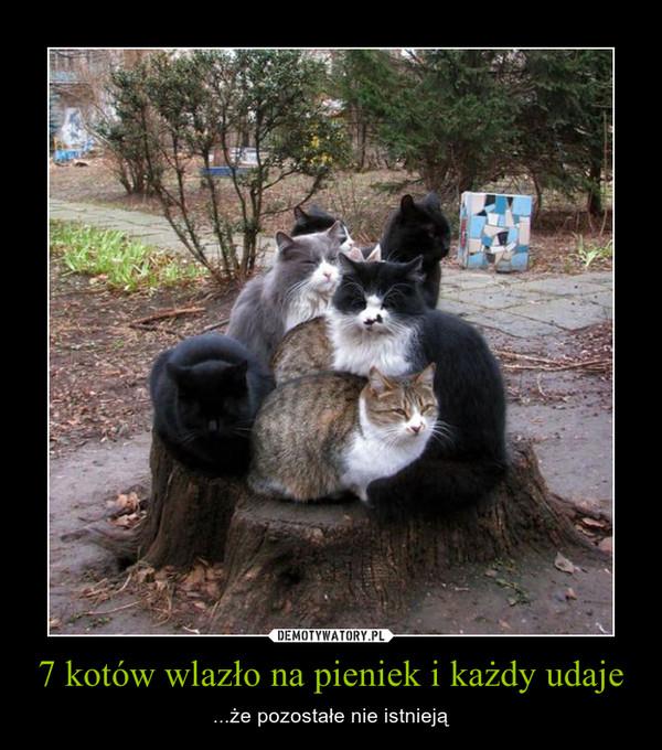 7 kotów wlazło na pieniek i każdy udaje – ...że pozostałe nie istnieją