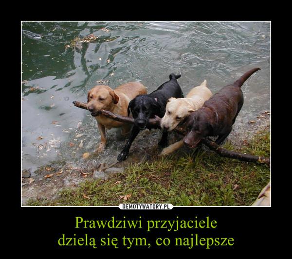 Prawdziwi przyjacieledzielą się tym, co najlepsze –