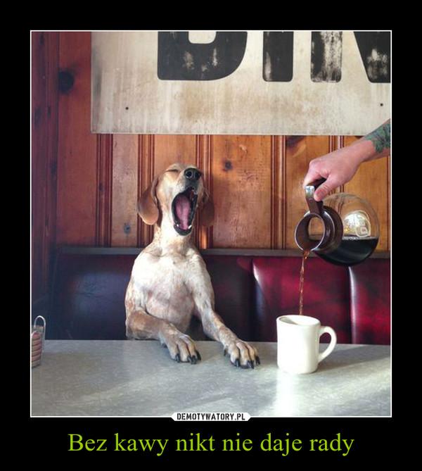 Bez kawy nikt nie daje rady –