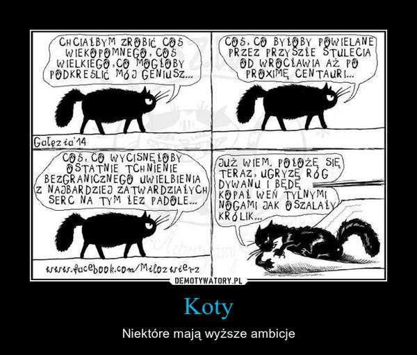 Koty – Niektóre mają wyższe ambicje