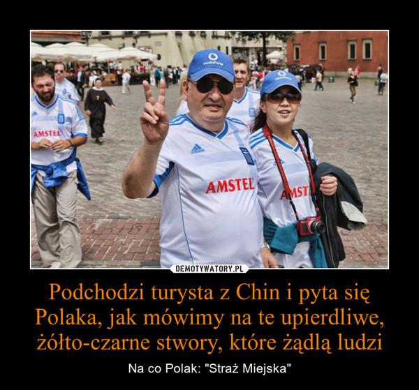"""Podchodzi turysta z Chin i pyta się Polaka, jak mówimy na te upierdliwe, żółto-czarne stwory, które żądlą ludzi – Na co Polak: """"Straż Miejska"""""""
