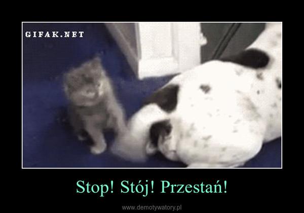Stop! Stój! Przestań! –