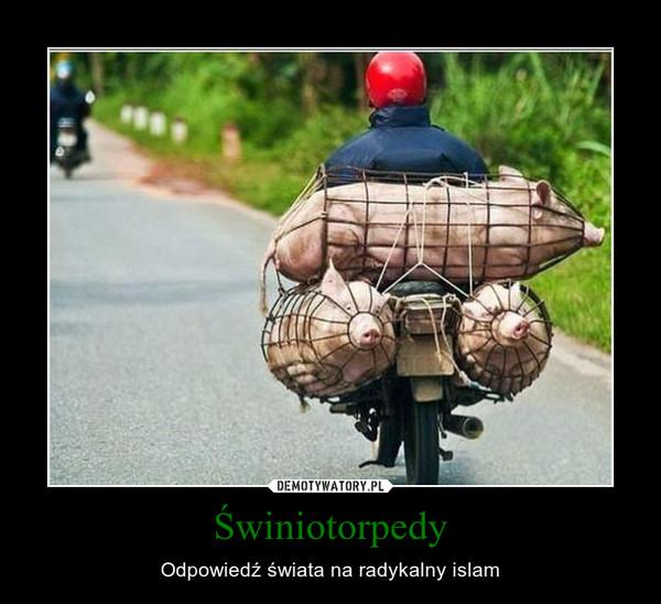 Znalezione obrazy dla zapytania świnia islam