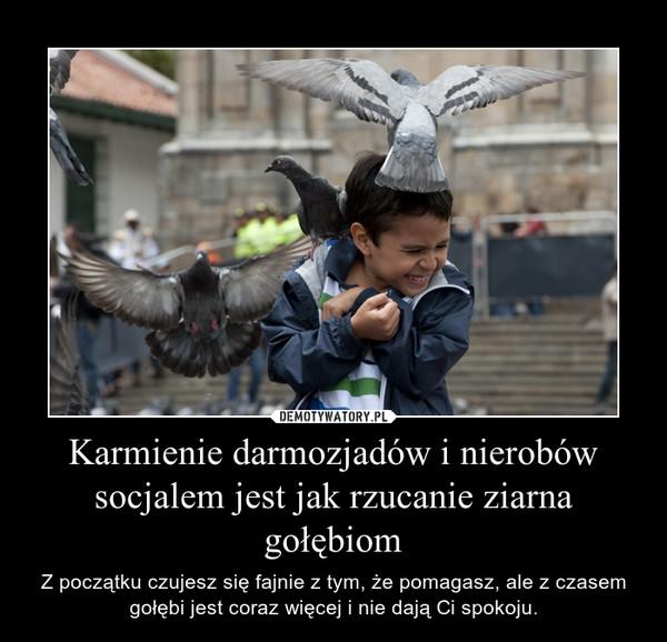 Karmienie darmozjadów i nierobów socjalem jest jak rzucanie ziarna gołębiom – Z początku czujesz się fajnie z tym, że pomagasz, ale z czasem gołębi jest coraz więcej i nie dają Ci spokoju.