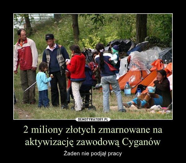 2 miliony złotych zmarnowane na aktywizację zawodową Cyganów – Żaden nie podjął pracy