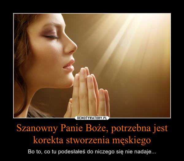 Szanowny Panie Boże, potrzebna jest korekta stworzenia męskiego – Bo to, co tu podesłałeś do niczego się nie nadaje...