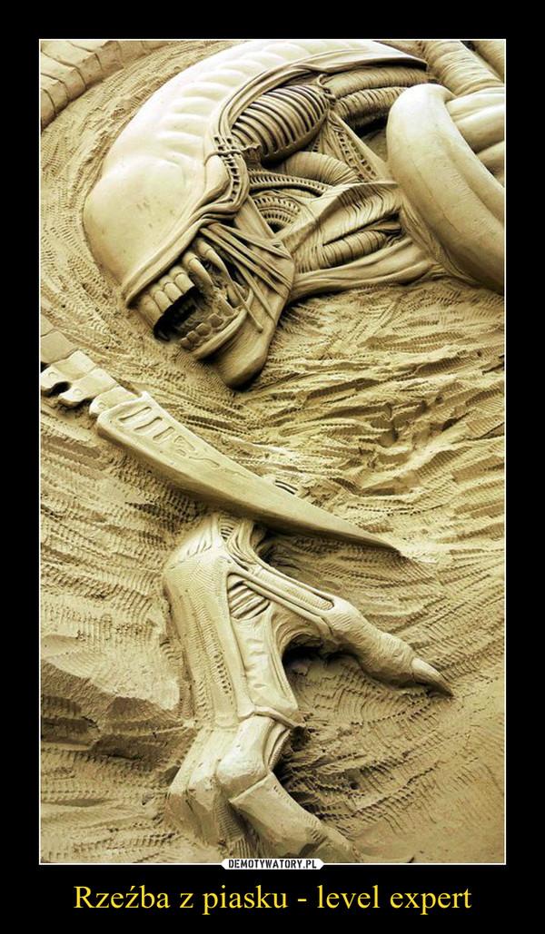 Rzeźba z piasku - level expert –