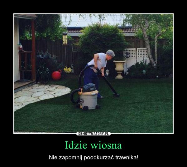 Idzie wiosna – Nie zapomnij poodkurzać trawnika!