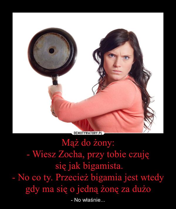 Mąż do żony:- Wiesz Zocha, przy tobie czuję się jak bigamista.- No co ty. Przecież bigamia jest wtedy gdy ma się o jedną żonę za dużo – - No właśnie...