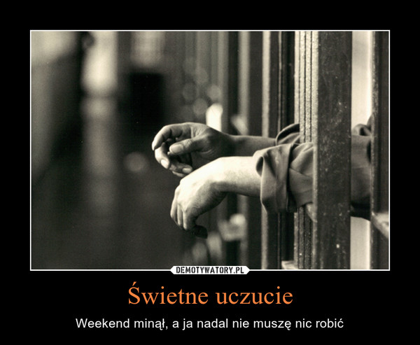 Świetne uczucie – Weekend minął, a ja nadal nie muszę nic robić