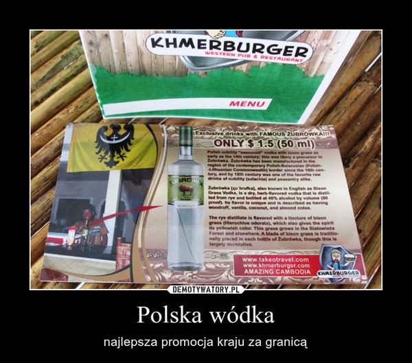 Polska wódka – najlepsza promocja kraju za granicą