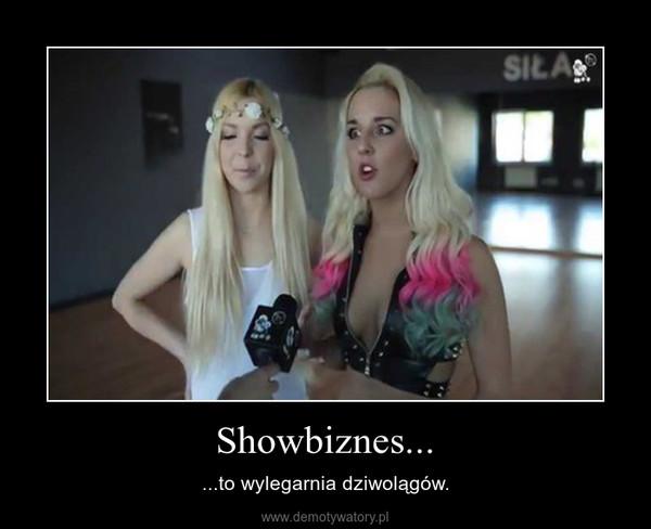 Showbiznes... – ...to wylegarnia dziwolągów.