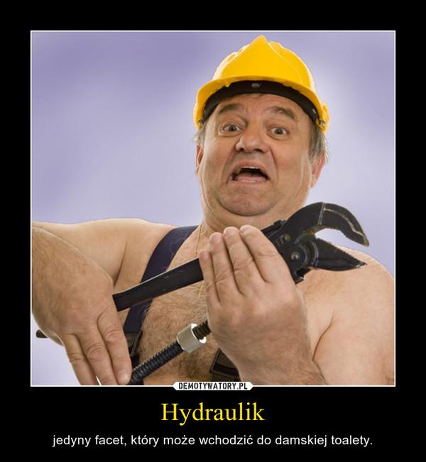 Hydraulik – jedyny facet, który może wchodzić do damskiej toalety.