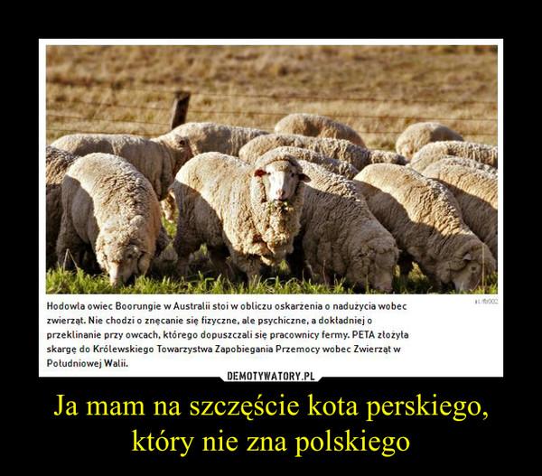Ja mam na szczęście kota perskiego, który nie zna polskiego –