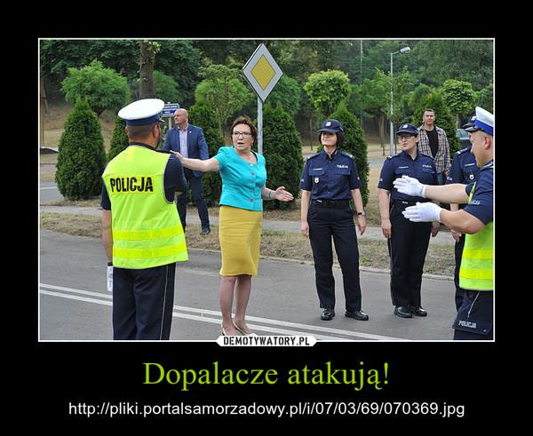 Dopalacze atakują! – http://pliki.portalsamorzadowy.pl/i/07/03/69/070369.jpg