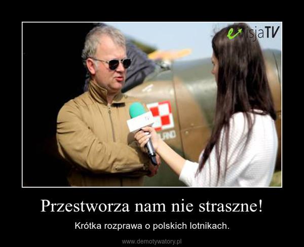 Przestworza nam nie straszne! – Krótka rozprawa o polskich lotnikach.