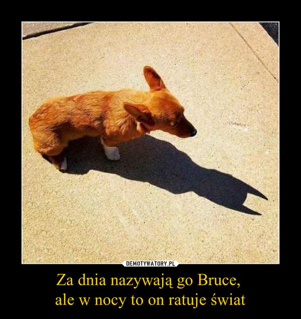 Za dnia nazywają go Bruce, ale w nocy to on ratuje świat –