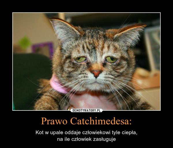 Prawo Catchimedesa: – Kot w upale oddaje człowiekowi tyle ciepła,na ile człowiek zasługuje